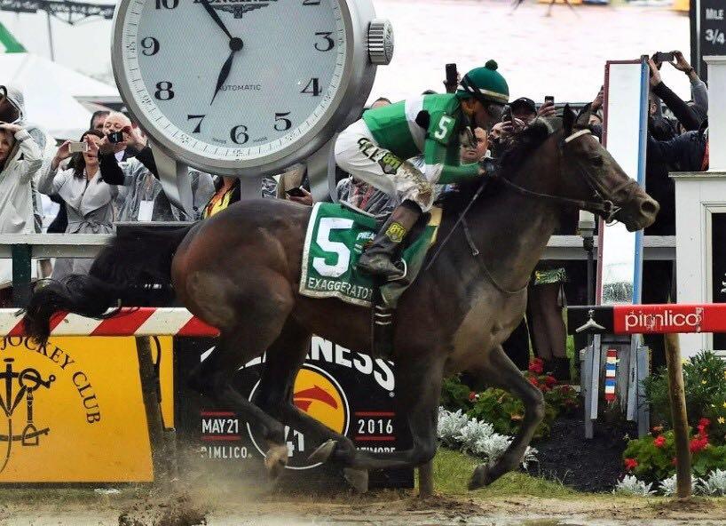 Exaggerator atropela o favorito Nyquist e leva o Preakness Stakes