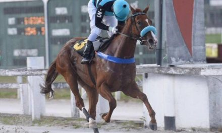 Love 'N' Happiness, uma Setembro Chove, sobra no GP Emerald Hill (gr.III)