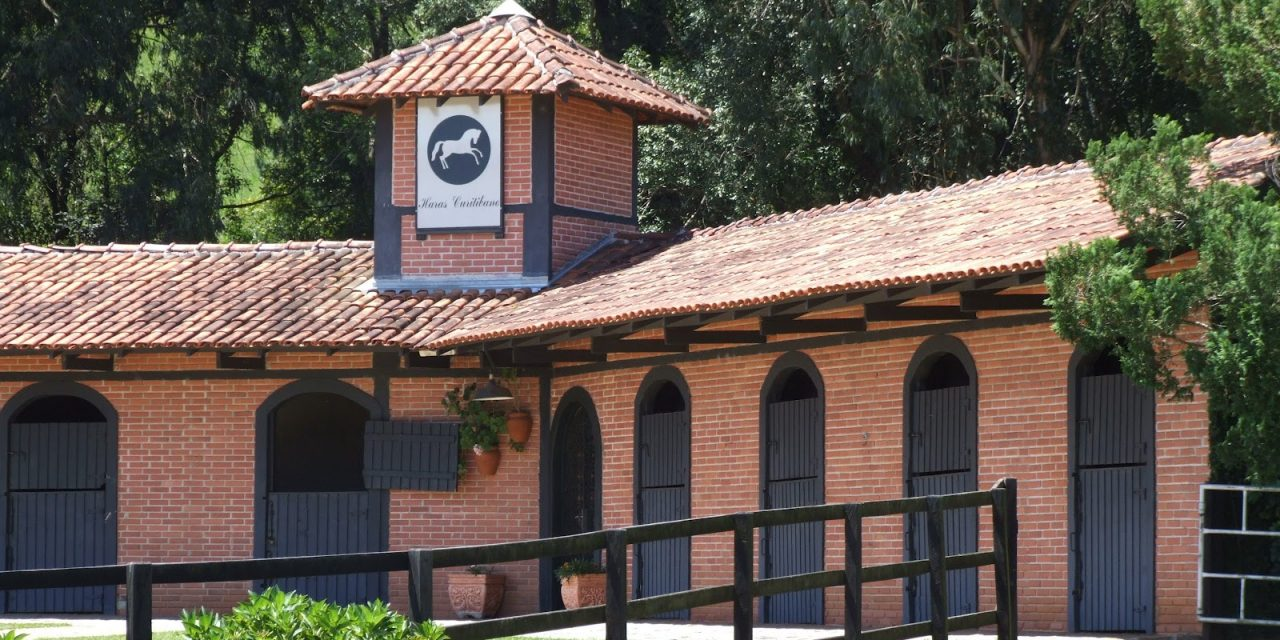 Criação paranaense em destaque no Uruguai