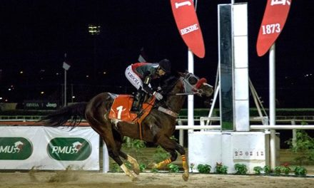 First Amour vence e se credencia para o bicampeonato do GP Paraná